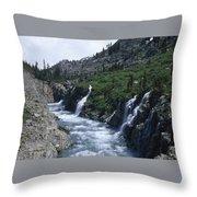 South Fork San Joaquin River Throw Pillow