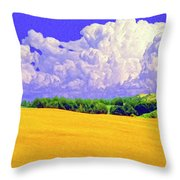 South Forty Throw Pillow