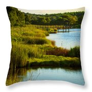 South From The Causeway Huntington Beach State Park Sc Throw Pillow