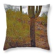 South Mountain6 Throw Pillow