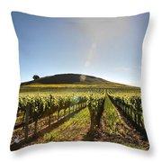 South Napa Valley Morning Throw Pillow