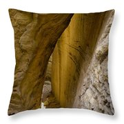 South Of Pryors 12 Throw Pillow