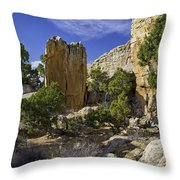 South Of Pryors 17 Throw Pillow