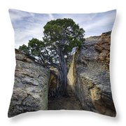 South Of Pryors 2 Throw Pillow by Roger Snyder