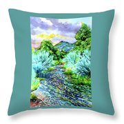 South Platte River  Throw Pillow