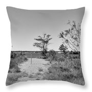 South Pole Of New York Throw Pillow