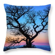 South Rim Tree Throw Pillow