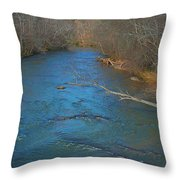South River Throw Pillow