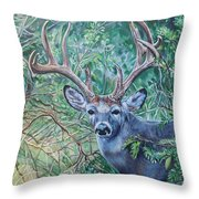South Texas Deer In Thick Brush Throw Pillow