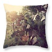 South Texas Evening Throw Pillow