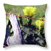 South Texas Fence Throw Pillow