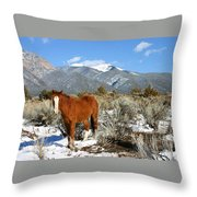 South West Ginger Throw Pillow