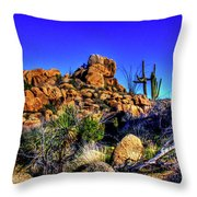 Southbound On Us 93 Throw Pillow