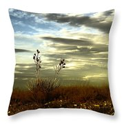 Southeastern New Mexico Throw Pillow