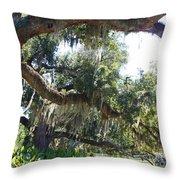 Southern Backyard Throw Pillow
