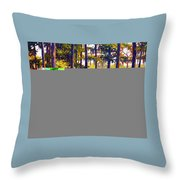 Southern Breeze Throw Pillow