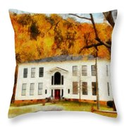 Southern Charn Throw Pillow
