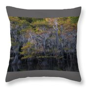 Southern Colors Throw Pillow