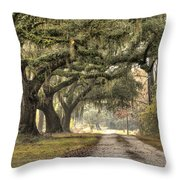Southern Drive Live Oaks And Spanish Moss Throw Pillow by Dustin K Ryan