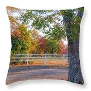 Southern Fall Throw Pillow