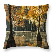 Southern Gold Throw Pillow