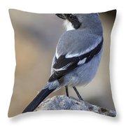 Southern Grey Shrike-- . Throw Pillow