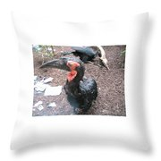 Southern Ground Hornbill Throw Pillow