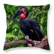 Southern Ground Hornbill Throw Pillow