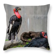 Southern Ground Hornbills Throw Pillow