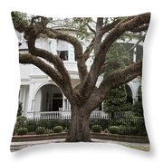 Southern Home Throw Pillow