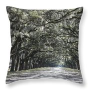 Southern Homecoming Throw Pillow