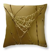 Southern Jewels Throw Pillow