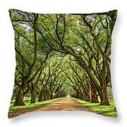 Southern Lane 5 Throw Pillow