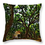 Southern Lane Throw Pillow