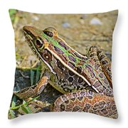 Southern Leopard Frog Throw Pillow