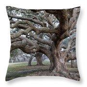 Southern Live Oak Throw Pillow