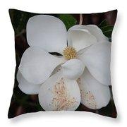 Southern Magnolia Matchsticks Throw Pillow