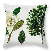 Southern Magnolia Or Bull Bay  Throw Pillow