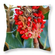 Southern Magnolia Seedpods Throw Pillow
