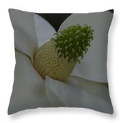 Southern Manor Throw Pillow