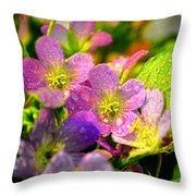 Southern Missouri Wildflowers 1 Throw Pillow