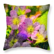 Southern Missouri Wildflowers 1 - Digital Paint 2 Throw Pillow