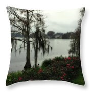 Southern Moss Throw Pillow