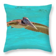 Southern Most Pelican Throw Pillow