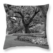 Southern Oaks In Black And White Throw Pillow