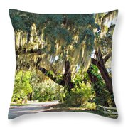 Southern Pathway Throw Pillow