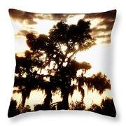 Southern Pine Throw Pillow