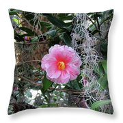 Southern Pink Camellia Throw Pillow