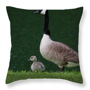 Southern Pond View Throw Pillow