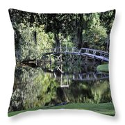 Southern Reflections Throw Pillow